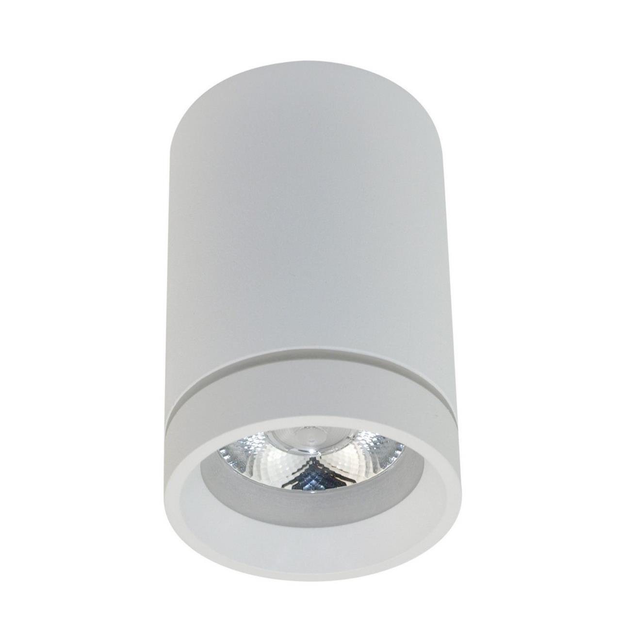 Встраиваемый-накладной светильник Aployt APL.0053.09.10
