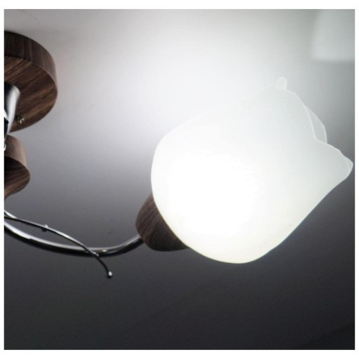 Бра настенное с плафоном LED4U 5510/1В