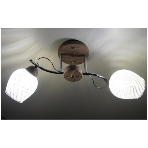 Потолочная люстра LED4U 5500/2