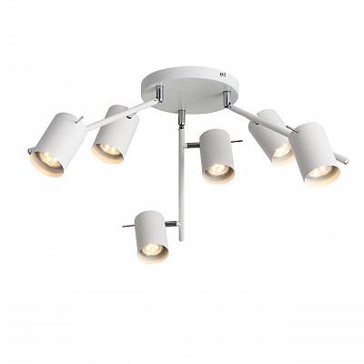 Потолочная светодиодная люстра ST Luce Fanale SL597.502.06