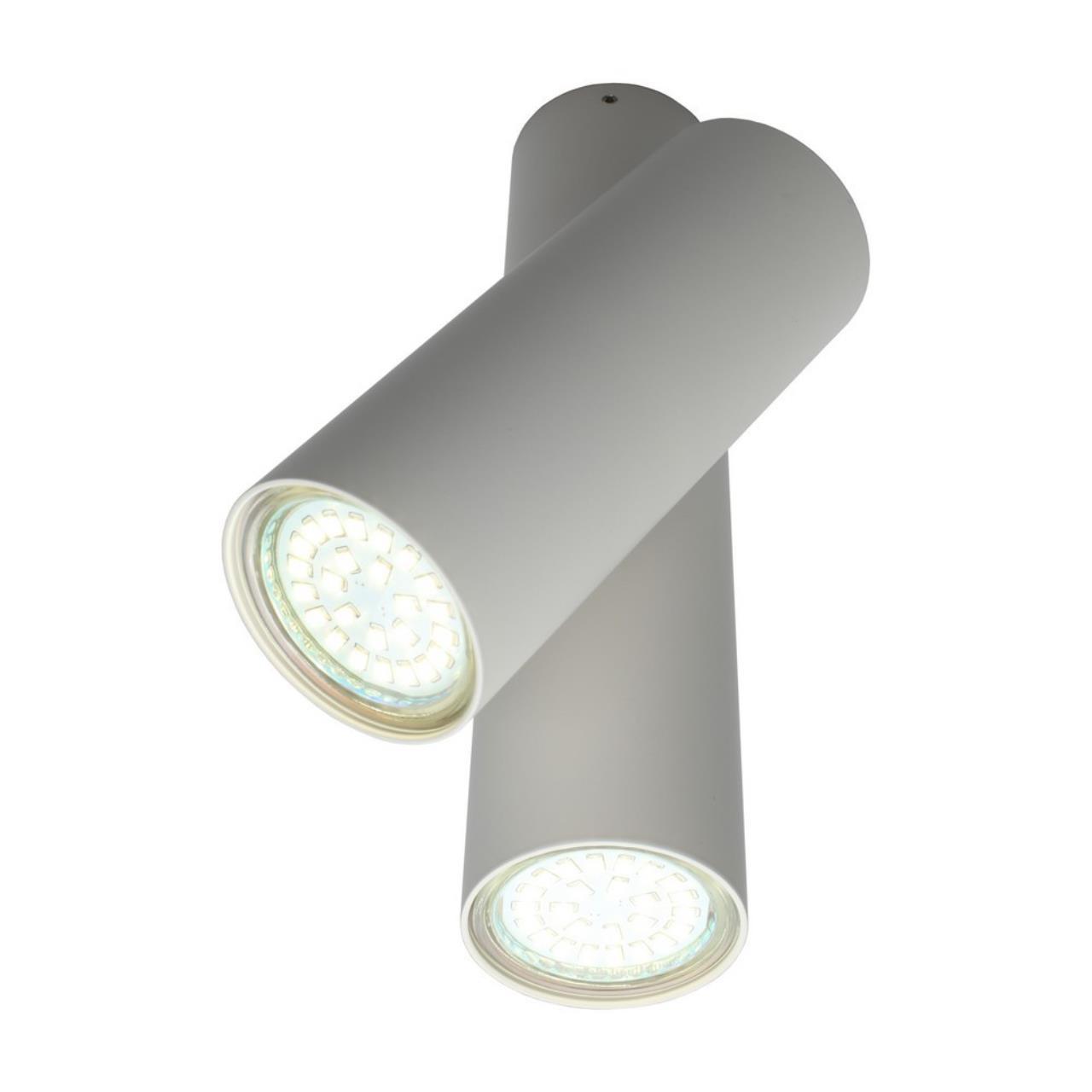 Настенно-потолочный светильник Aployt APL.006.02.02
