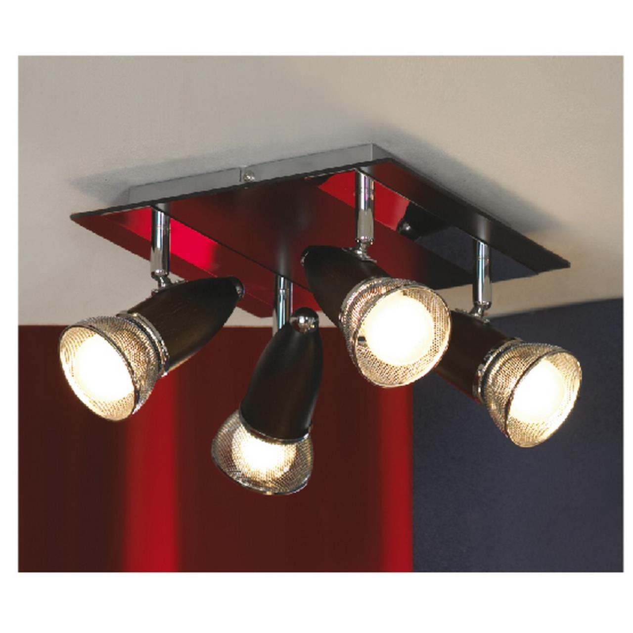 Настенно-потолочный светильник Lussole LSL-8001-04 S
