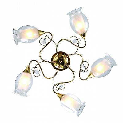 Потолочная люстра Arte Lamp Mughetto A9289PL-5GO