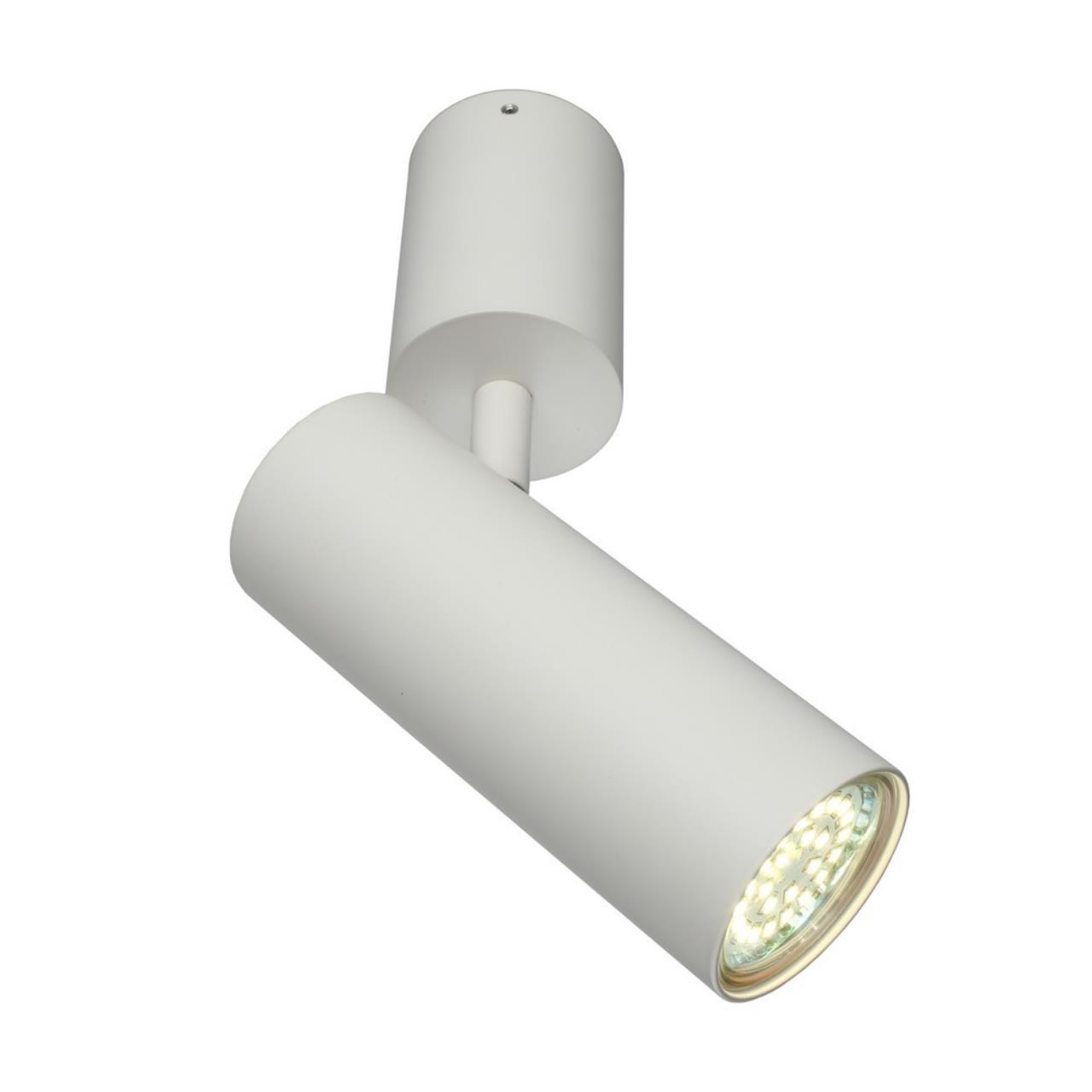 Настенно-потолочный светильник Aployt APL.007.02.01