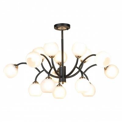 Подвесная люстра Lussole Loft Astoria GRLSP-8330
